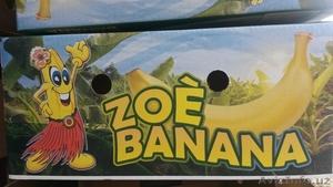 фрукты бананы продам - Изображение #2, Объявление #268980